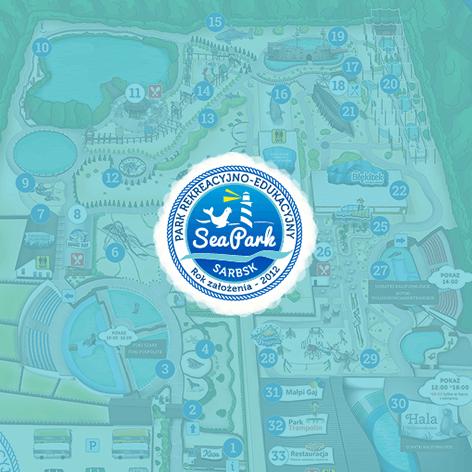 Realizacja dla firmy Seapark