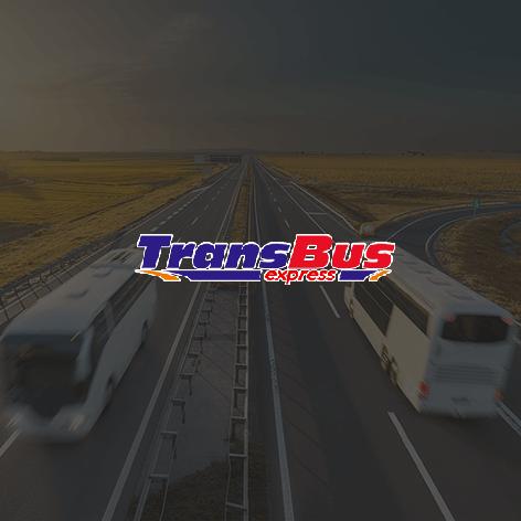 Realizacja dla firmy Transbusexpress